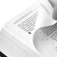 La Biblia como literatura
