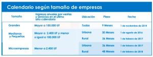 Calendario Implementación Facturación electrónica 2015