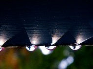 raindrops on a rain gutter