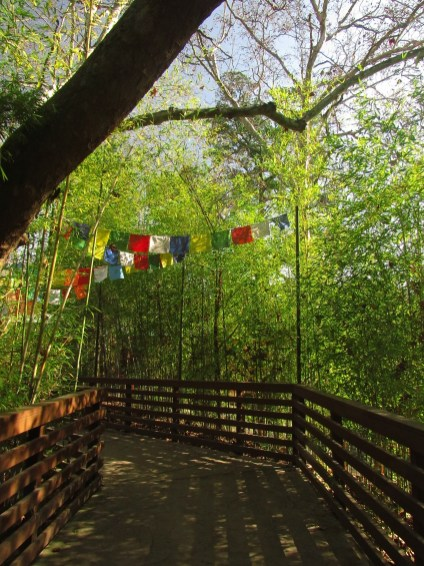 """Prayer flags"" at the Sacramento Zoo"