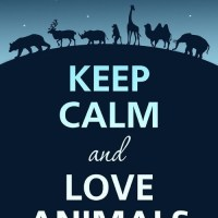 10 Amazing Quotes About Animals and Love: Part 2