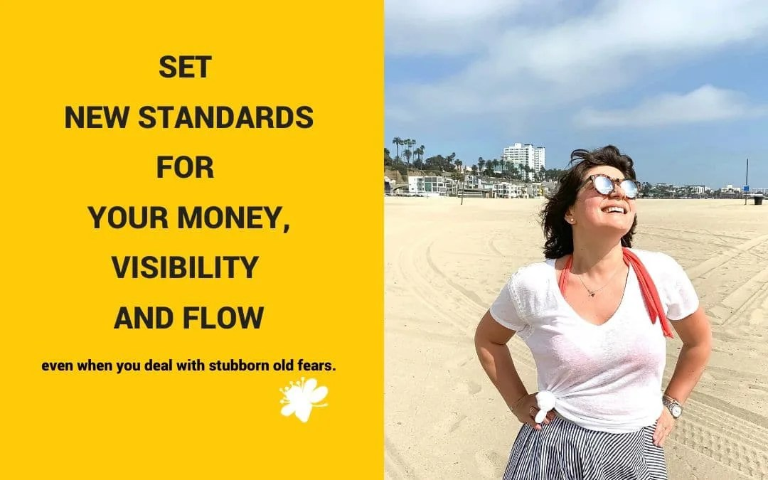 Set New Standards For Your Money, Visibility And Flow