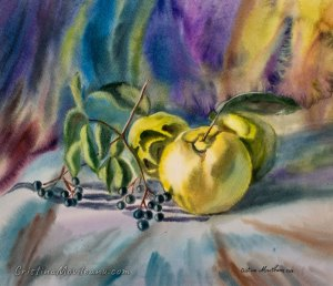 Quinces and blackberry colorful still life watercolor painting by Cristina Movileanu