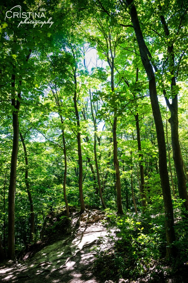 cristinaphotography_cristinaarce_travel_photographer_niagara_glen_nature_reserve_08