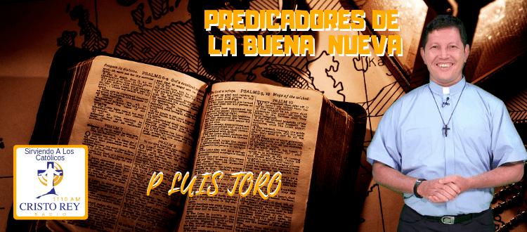 P LUIS TORO  - testimonio