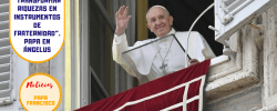 """""""Transformar riquezas en instrumentos de fraternidad"""". Papa en Ángelus"""