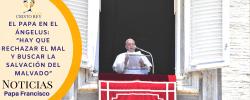 """El Papa en el Ángelus: """"Hay que rechazar el mal y buscar la salvación del malvado"""""""