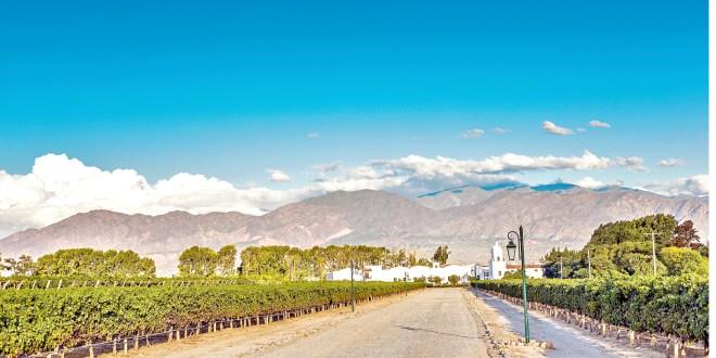 Atrae maravillas de Salta a viajeros mexicanos