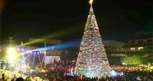 ¡No te pierdas el encendido de árbol en Pachuca!