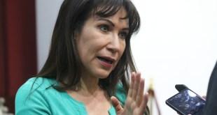 Designación de concejos debe hacerse con tiempo: Pérez Perusquía