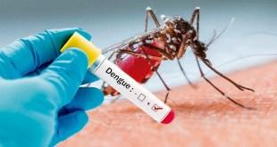 Hidalgo 109 positivos dengue