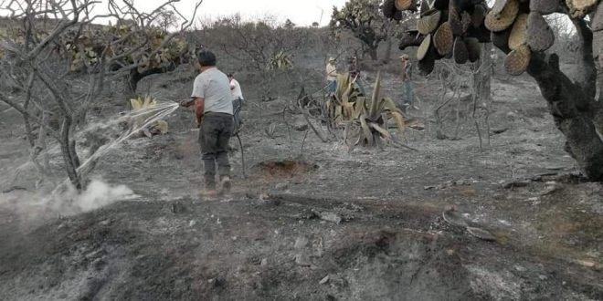 Apagan fuego en Nicolás Flores despApagan fuego en Nicolás Flores después de tres díasués de tres días