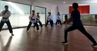 Arrancan taekwondoínes hidalguenses actividad en torneo virtual