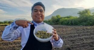 Impulsa youtuber hidalguense Ese Chikitin la cultura hñähñu