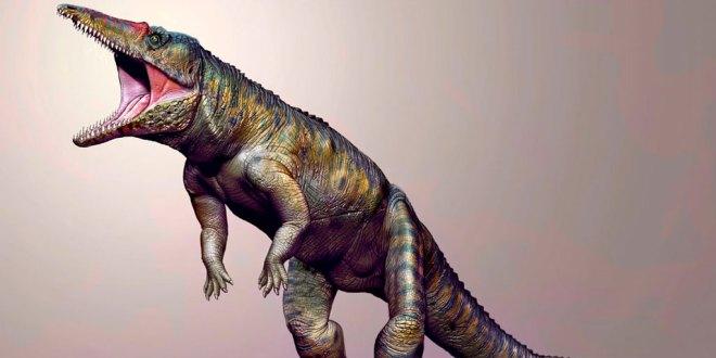 Cocodrilos dos patas 120 millones años