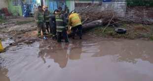 Dejó intensa lluvia daños en diversas zonas de Tizayuca