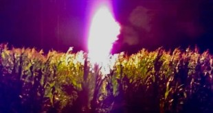 Se registra incendio por toma clandestina en ducto de Pemex en Ajacuba