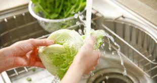Medidas para la correcta manipulación y preparación de los alimentos
