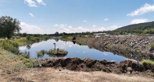 perderse 30 mil hectáreas cultivos derrame