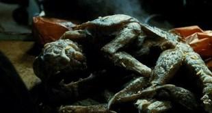 Adaptarán Mimic, de Guillermo Del Toro, a una serie