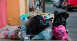 reglamento limpias Pachuca obligatorio separar basura
