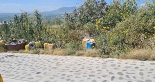 Decomisan tambos con químicos en Tepeji del Río
