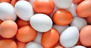 mexicanos consumen 345 huevos año