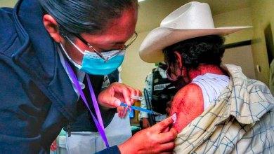 Pachuca evitar presencia vivales vacunación