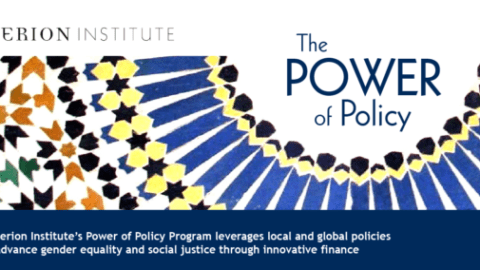 Introducing the Power of Policy Program