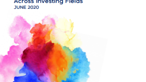 Investing with an LGBTQI Lens: Rethinking Gender Analysis Across Investing Fields