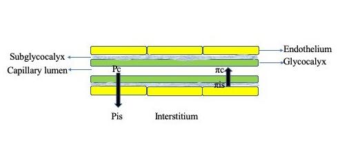 Fig 2 mod