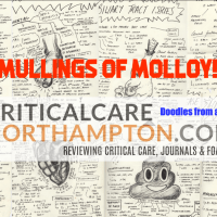 The mullings of Molloy!