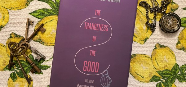 The Strangeness of the Good by James Matthew Wilson