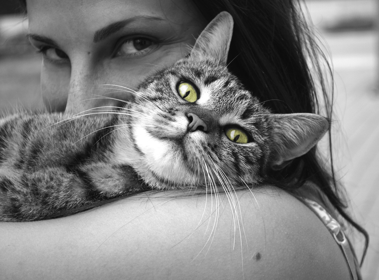 black and white lady cuddling cat