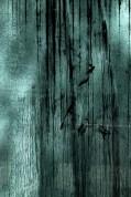 El azar encontrado (Ivan Barreiro) 25
