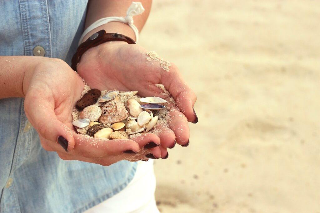 Seashells, Visit Croatia
