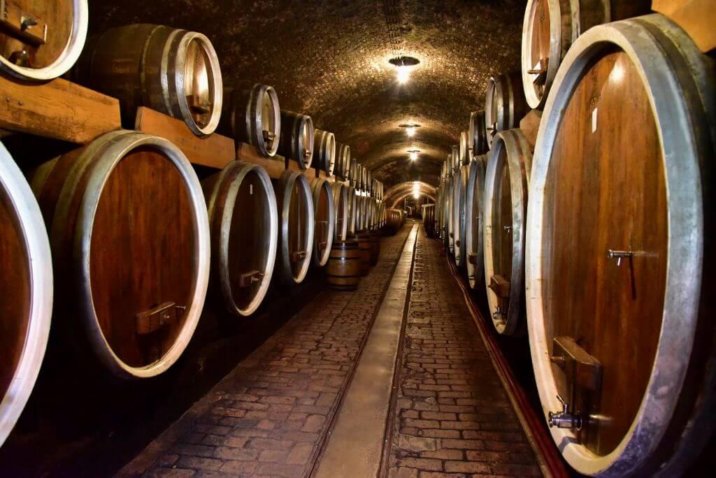 Wine Cellar, Ilok