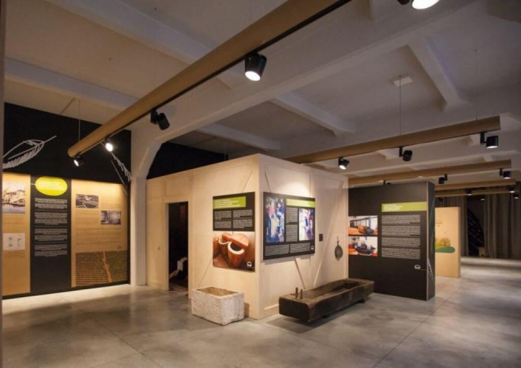 Olive Oil Museum, Istrian Peninsula