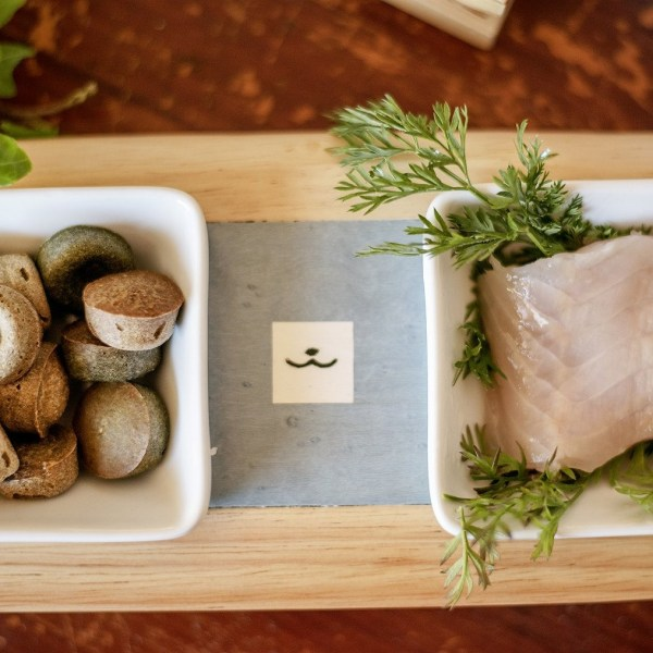 friandises-naturelles-pour-chiens-au-poisson-spiruline-crocandiz.com