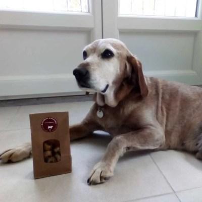 cookie et-ses-friandises-pour- chien