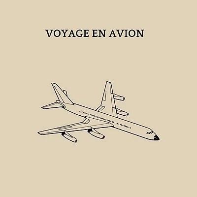 transport-chien-avion