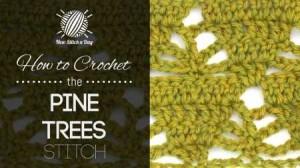 cro pine tree 0814