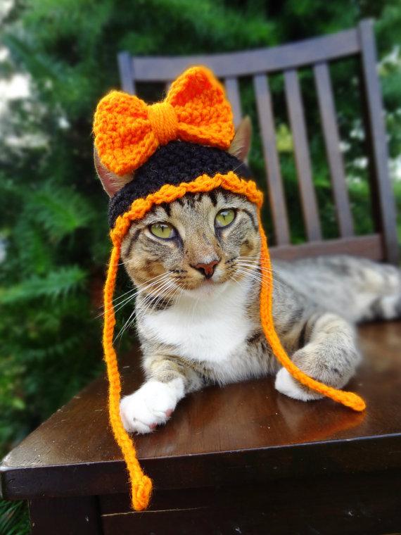 cat-hat-2