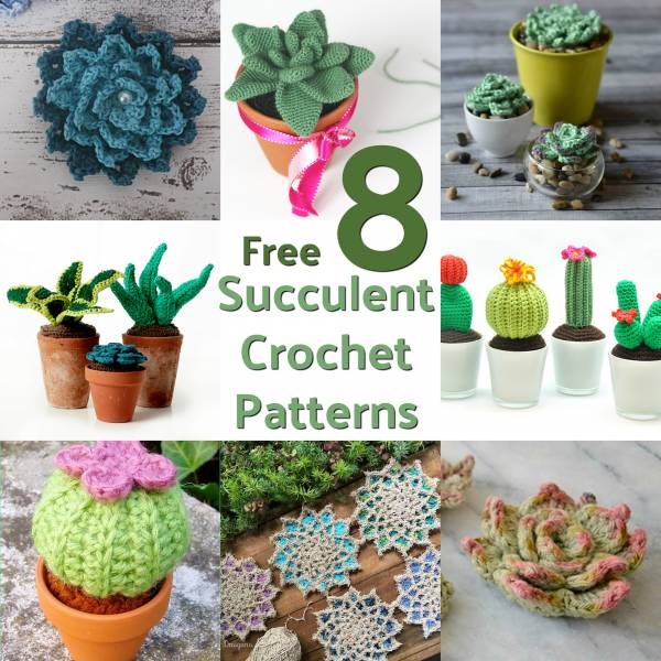 Blooming cactus amigurumi pattern - Amigurumi Today | 600x600