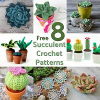 "8 Free Succulent ""Crazy Plant Lady"" Crochet Patterns"