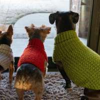 Crochet Dog Coats -  3 Sizes
