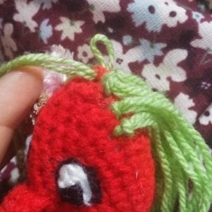 Attach green yarn as shown, and close with sl st.