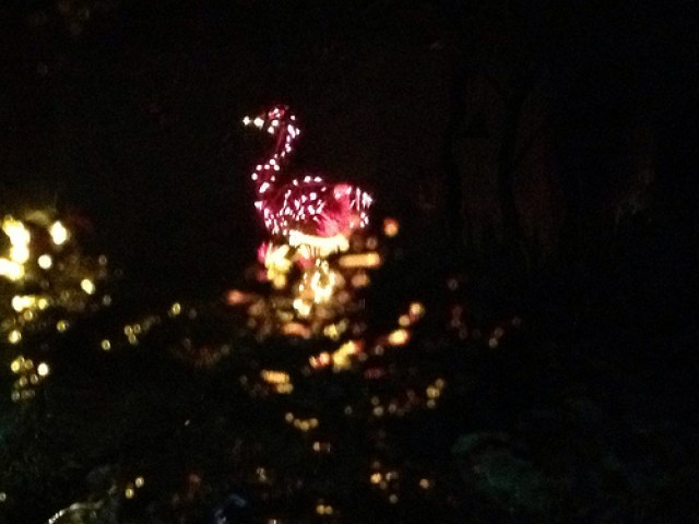 One of the flamingos at my cousin Lois's house