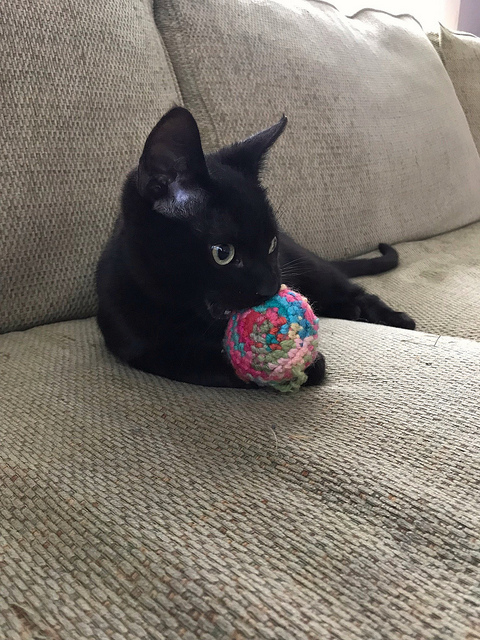 Marvin's first crochet appreciation lesson