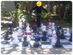 Decorated Chess set